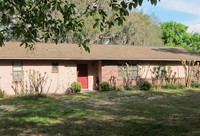 Winter Garden Single Family Home For Sale: 3421 Rex Drive