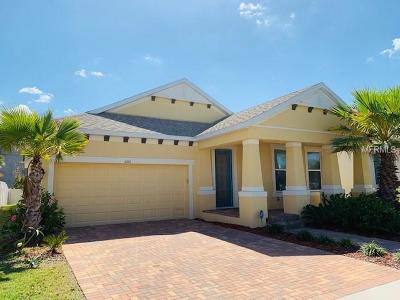 Apollo Beach Single Family Home For Sale: 5201 Admiral Pointe Drive