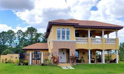 Punta Gorda Single Family Home For Sale: 8059 Strasse Boulevard