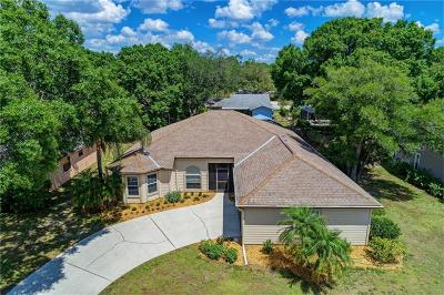 Single Family Home For Sale: 3717 Pond View Lane