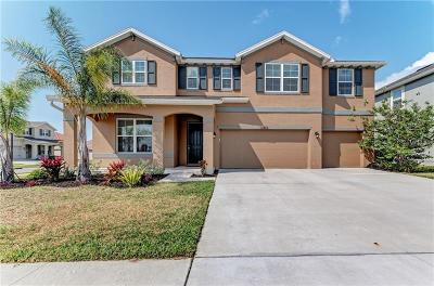 Riverview Single Family Home For Sale: 11902 Quack Grass Court