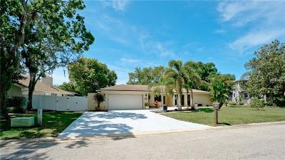 Bradenton Single Family Home For Sale: 4119 Pinar Drive