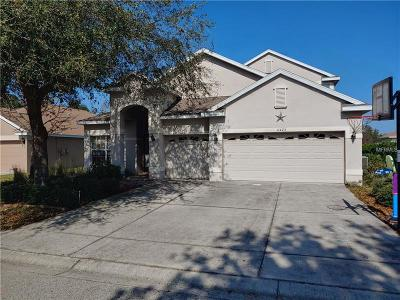 New Port Richey, New Port Richie Single Family Home For Sale: 11423 Crisfield Place