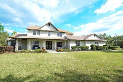 Bradenton Single Family Home For Sale: 6511 200th Street E