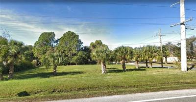 Residential Lots & Land For Sale: 246 Burney Road