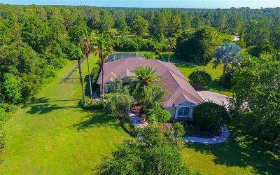 Bradenton Single Family Home For Sale: 22411 75th Avenue E