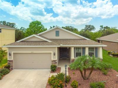 Bradenton Single Family Home For Sale: 6124 35th Court E