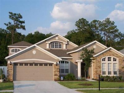 Wesley Chapel Single Family Home For Sale: 6846 Pine Springs Drive