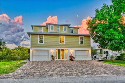 Palmetto Single Family Home For Sale: 314 13th Avenue W