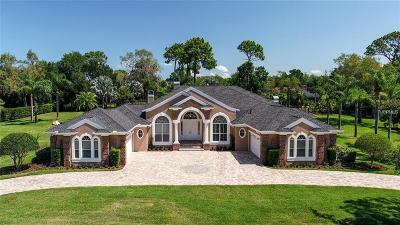 Tarpon Springs Single Family Home For Sale: 547 Austin Drive