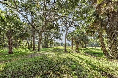 Myakka City Residential Lots & Land For Sale: 14090 Mossy Hammock Lane