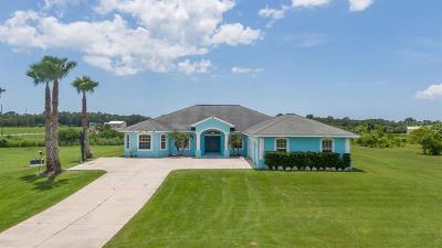 Palmetto Single Family Home For Sale: 10901 Bud Rhoden Road