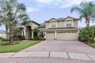 Hillsborough County, Pasco County, Pinellas County Single Family Home For Sale: 5004 Kepfer Way
