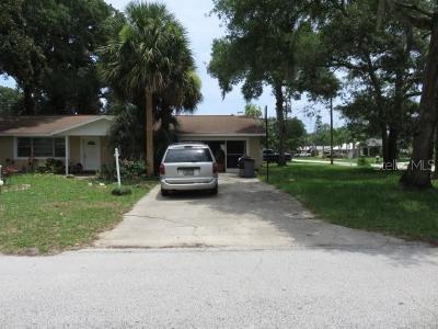 Ormond Beach Single Family Home For Sale: 501 McIntosh Road