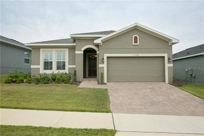 Clermont Single Family Home For Sale: 17008 Gathering Place Circle