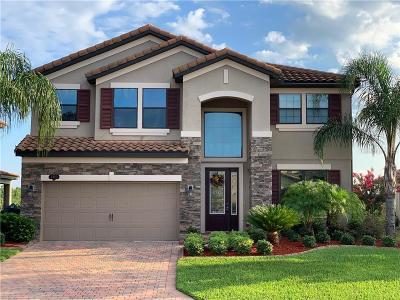 Lakeland Single Family Home For Sale: 3922 Sunset Lake Drive