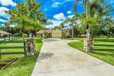Bradenton Single Family Home For Sale: 6525 95th Street Court E