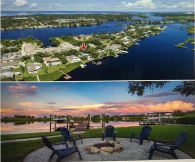 Tarpon Springs Single Family Home For Sale: 696 Chesapeake Drive