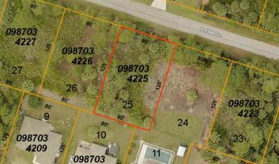 North Port Residential Lots & Land For Sale: Portago Lane