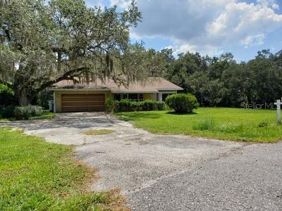 North Port Single Family Home For Sale: 11991 De Soto Drive
