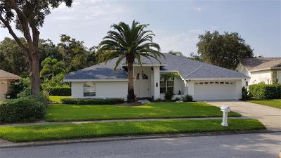 Hillsborough County, Pasco County, Pinellas County Single Family Home For Sale: 904 Belted Kingfisher Drive S