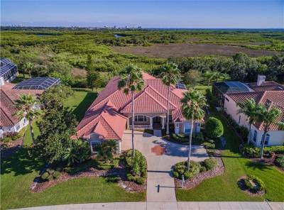 Tampa Single Family Home For Sale: 5611 E LONGBOAT BOULEVARD