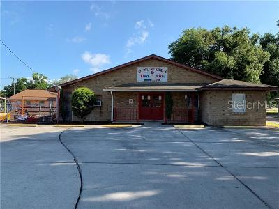 Bartow Commercial For Sale: 490 W Davidson Street