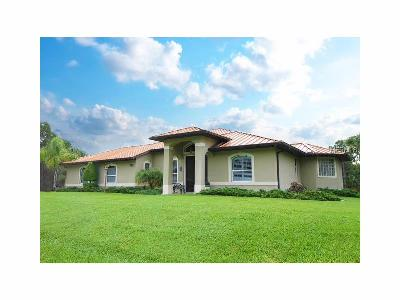 North Port Single Family Home For Sale: 3696 Tonkin Drive