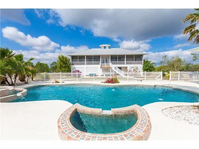 Punta Gorda Single Family Home For Sale: 36456 Washington Loop Road