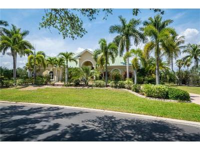 Port Charlotte Single Family Home For Sale: 21330 Harborside Boulevard