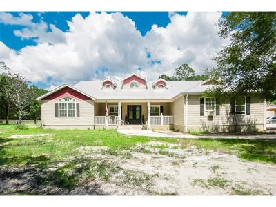 North Fort Myers Single Family Home For Sale: 17660 Wells Road