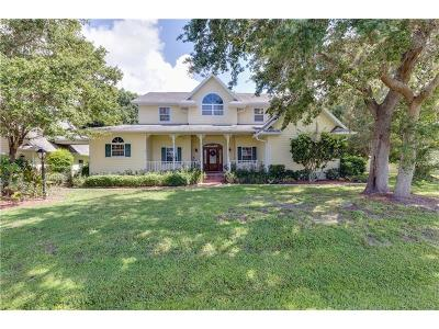 Port Charlotte Single Family Home For Sale: 23322 Freeport Avenue