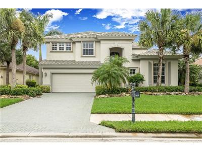 Port Charlotte Single Family Home For Sale: 14018 Royal Pointe Drive