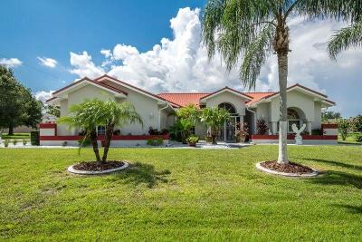 Single Family Home For Sale: 25987 Aysen Drive