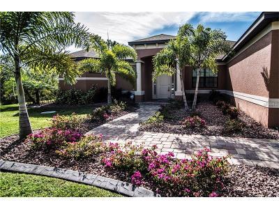 Port Charlotte Single Family Home For Sale: 10128 Lebanon Drive