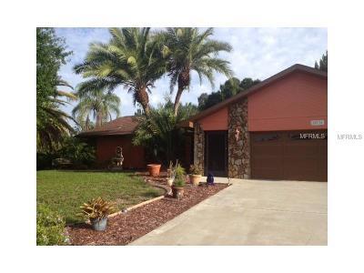 Port Charlotte Single Family Home For Sale: 20176 Vanguard Terrace