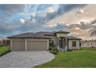 Port Charlotte Single Family Home For Sale: 18080 Dublin Avenue
