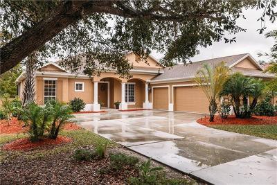 Single Family Home For Sale: 4861 Luster Leaf Lane