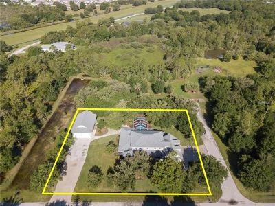 Single Family Home For Sale: 12289 SW Austin Avenue