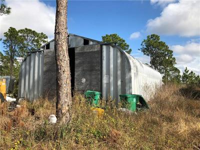 Punta Gorda Single Family Home For Sale: 7174 Sweden Boulevard