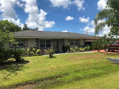 Punta Gorda Single Family Home For Sale: 424 Hazel Circle