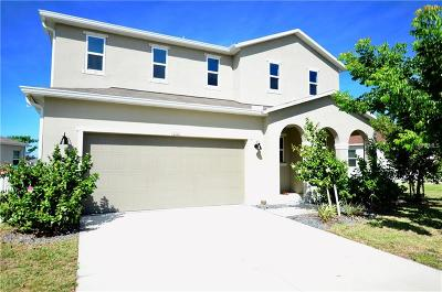 Punta Gorda Single Family Home For Sale: 10101 Winding River Road
