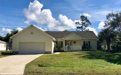 Port Charlotte Single Family Home For Sale: 943 Red Bay Terrace NW