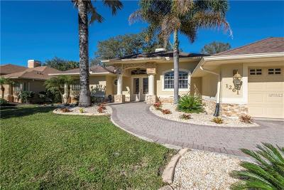 North Port Single Family Home For Sale: 1261 S Haberland Blvd