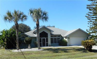 Port Charlotte Single Family Home For Sale: 17285 Robinson Avenue