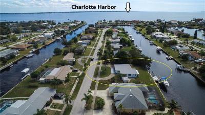 Port Charlotte Single Family Home For Sale: 132 Roselle Court