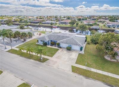 Port Charlotte Single Family Home For Sale: 233 Stebbins Terrace SE
