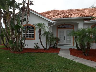 Port Charlotte Single Family Home For Sale: 6651 David Boulevard