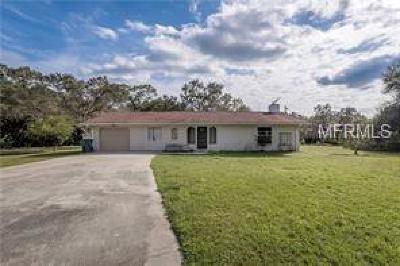 North Port Single Family Home For Sale: 12005 De Soto Drive