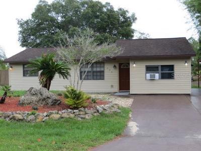 Port Charlotte Single Family Home For Sale: 256 Ambler Street